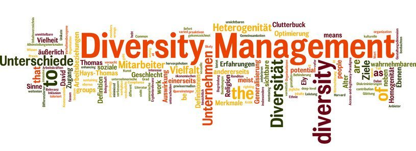 diversity management The practice of addressing and supporting multiple lifestyles and personal characteristics within a defined group management activities includes educating the group and providing support for the acceptance of and respect for various racial, cultural, societal, geographic, economic and political backgrounds.